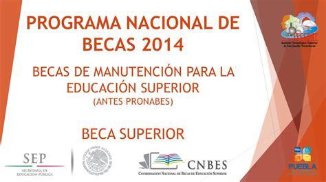 programa nacional de becas bicentenario programa nacional de becas ppt descargar