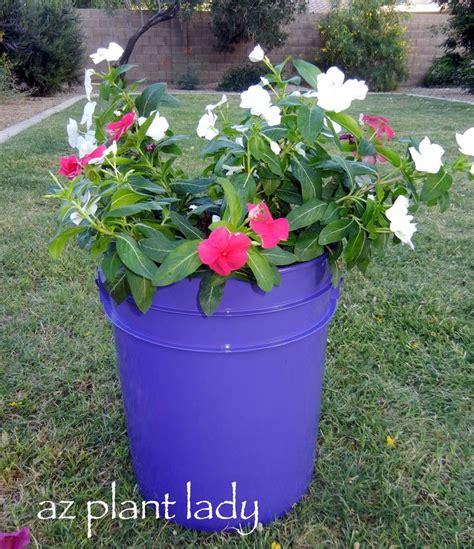 135 Best 5 Gallon Buckets Images On Pinterest 5 Gallon 5 Gallon Vegetable Garden