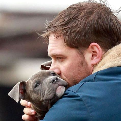 tom hardy puppy tom hardy snuggles puppy becomes our ideal pics news news reveal