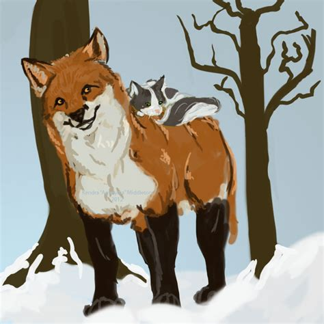 is a fox a cat or fox and cat by amelydia on deviantart