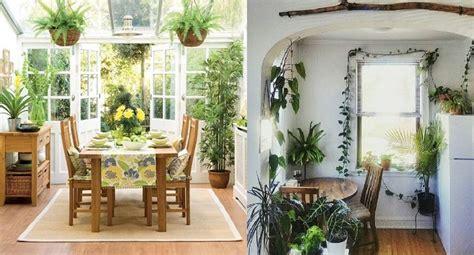 plantas  decorar la cocina  daran productividad