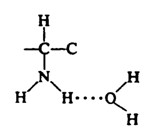 exle of hydrogen bond hydrogen bond exles www pixshark images