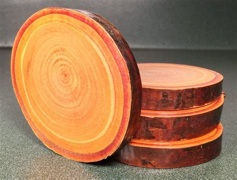Copper Birch Wood Coasters   Natural Wood Coasters