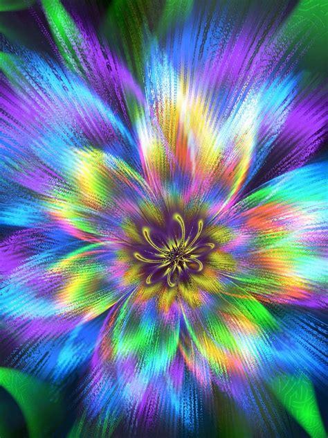 il fiore di maggio fiore di maggio by maroc68 on deviantart
