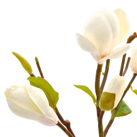 luxury artificial white magnolia branch