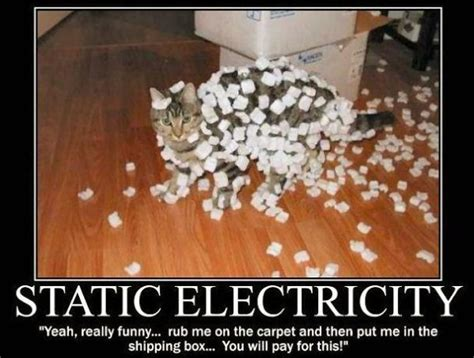 Electricity Meme - static electricity cat meme cat planet cat planet