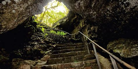 gruta das torres visit azores