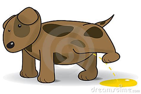 puppy pees all the time vector illustration of a royalty free stock image image 14774486