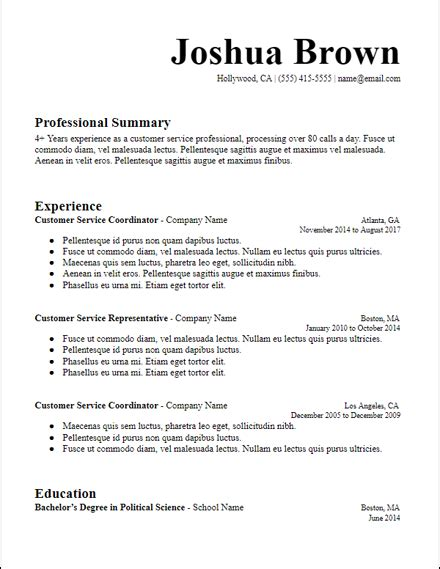 Resume Template Summary by Docs Specific Professional Summary Resume Template