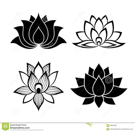 lotus flower graphic design 507 best i lilies images on lotus flower
