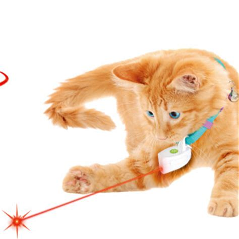 cat toy best cat toy laser coller laser cat toy laser