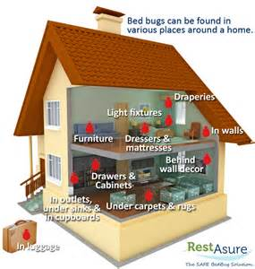 restasure the safe bed bug solution