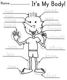 body parts the kindergarten english blog