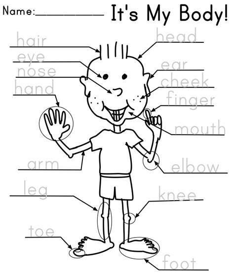 printable worksheets for kindergarten esl parts of the body the kindergarten english blog
