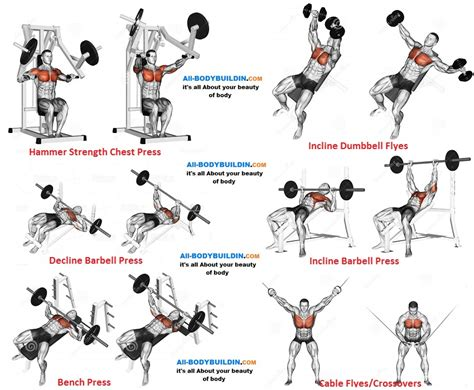 back bench routine chest program f chest workout