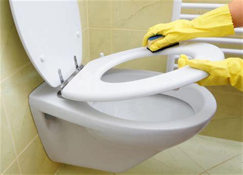 comment nettoyer toilettes la r 233 ponse est sur admicile fr