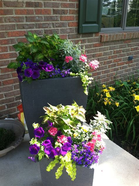 Porch Planters Ideas by 17 Best Images About Front Porch Planters On