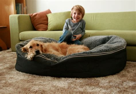 extra large dog houses for great danes extra large dog beds for great danes dog pet photos gallery 4zl2admkwl