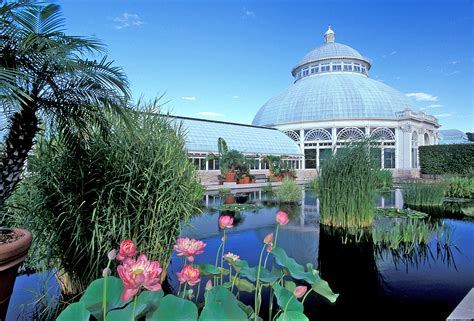 Botanic Gardens Nyc Frida Kahlo Masterpieces Margaritas Headed To Ny Botanical Garden Observer