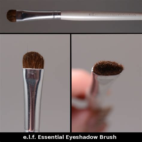 Guest Themakeupgirl Single Shadowsa Thing by Guest Post Eight Essential Brushes On A Budget Swatch