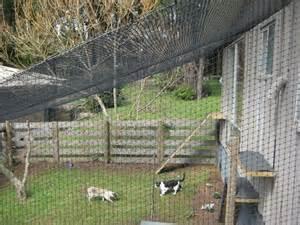 Backyard Dog Pens by Cat Works Cat Enclosures In Mccrae Melbourne Vic Pet
