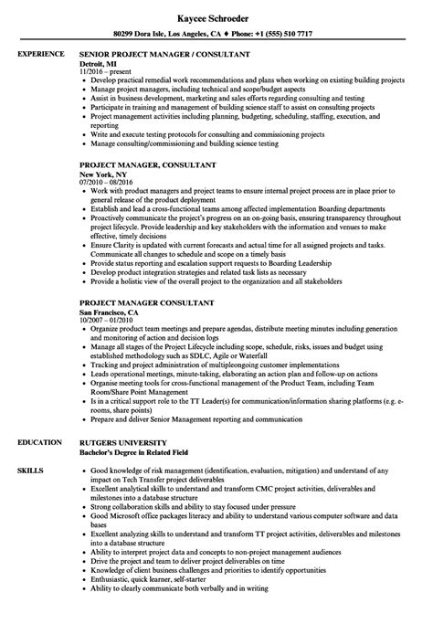 project management consultant resume sles project manager consultant resume sles velvet