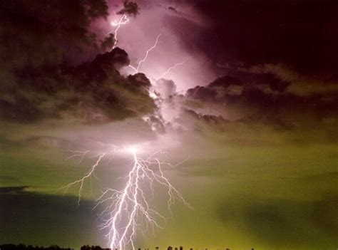 afraid of thunder what are the ten most common phobias