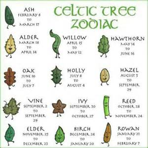 What Calendar Is The Zodiac Based On The Celtic Tree Zodiac Is Based On The Ancient Idea That