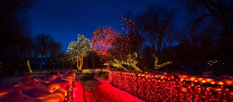 Denver Botanic Gardens Trail Of Lights Trail Of Lights Denver Botanic Gardens