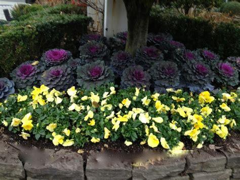 perennial flower garden plans new jersey perennial garden perennial flowers new jersey