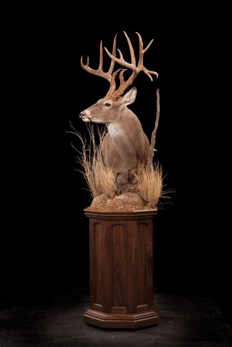 Animal Wall Murals deer archives kanati studio