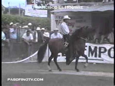 caballo de la sabana youtube francisco el hombre resorte iv fc paso fino colombiano