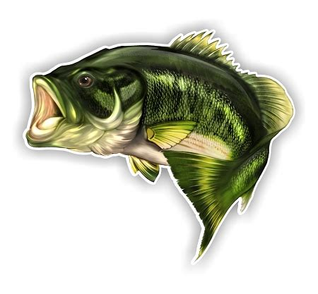 robalo boat letters largemouth bass fish f die cut vinyl decal sticker