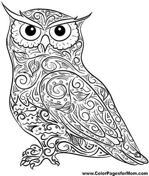 442 best owl coloring pages uil kleurplaten images on