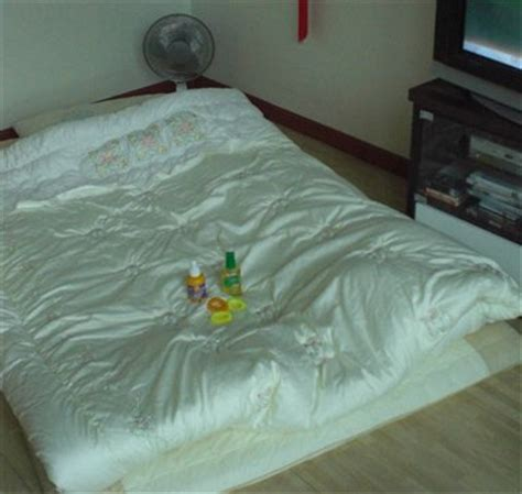 korean bed my korean bed mosquito supplies mosquito control south korea worldnomads com