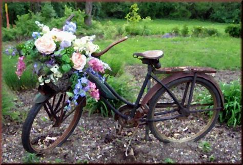 14 best images about what to do with an bike on gardens yard and basket of