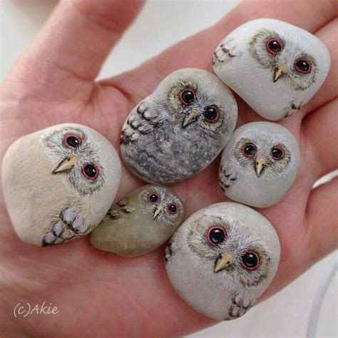 19 best images about owls on pinterest owls owl and these painted owl stones are just to cute have you