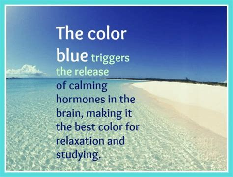 the most calming color blue is the best color for relaxation beach bliss living