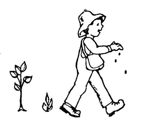apple seeds coloring pages mormon share johnny appleseed
