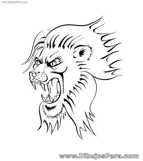 imagenes leones marinos para colorear dibujo de leon malo para pintar dibujos para colorear