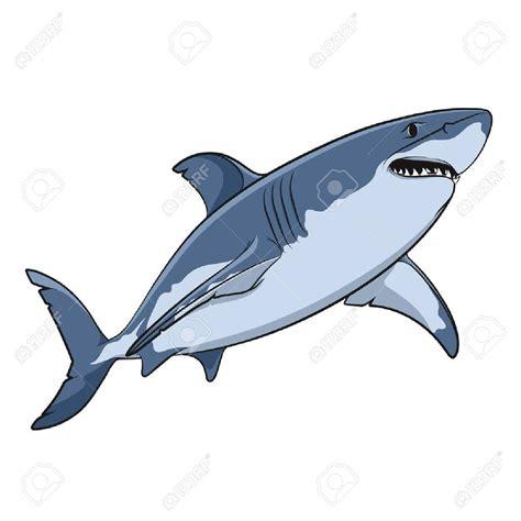 Dessin Requin Blanc Coloriages Store Dessin A Colorier De Requin Blanc L