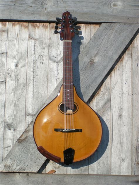 Handmade Mandolins - handmade mandolins t 246 njes handmade musical instruments