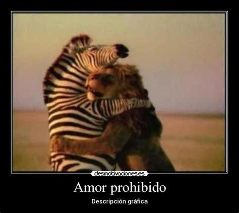 imágenes de amor prohibido historias de amor prohibido historia de un amor prohibido