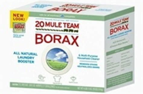 borax bed bugs pest control 1 keep roaches waterbugs and ants away by