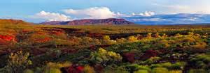 Landscape Artists Western Australia Western Australia Neal Pritchard Landscape Photography