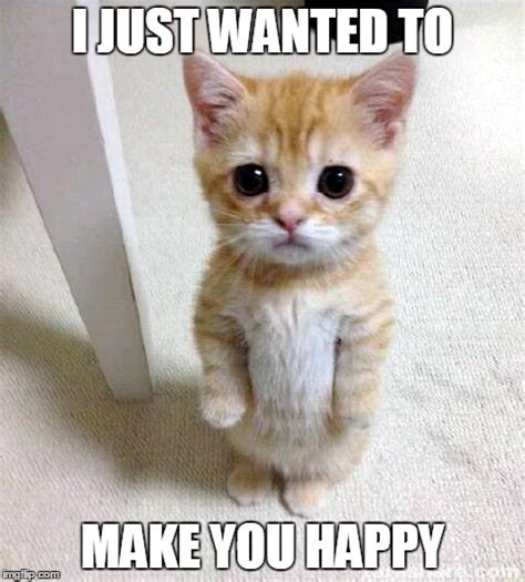 Be Happy Meme - cute cat meme imgflip