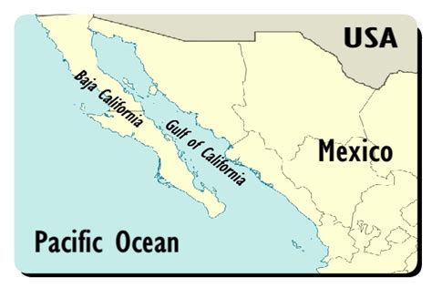 where is the gulf of california located on a map gulf of california or sea of cortez facts the nature s