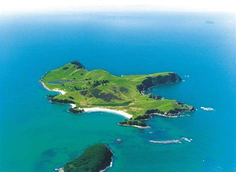 slipper island for sale 11 best islands in new zealand images on