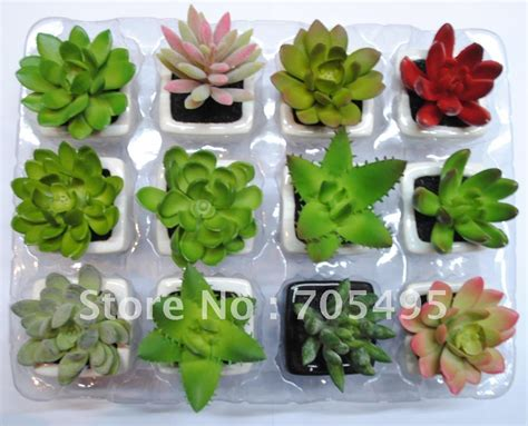 miniature plants for sale hot sale free shipping 12pcs set mini artificial potted