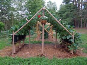 How To Build Trellis by Pics Photos Build A Trellis